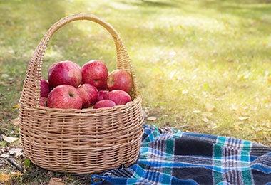 Desayuno sorpresa en picnic