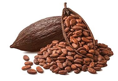 Granos de cacao para desayuno mexicano